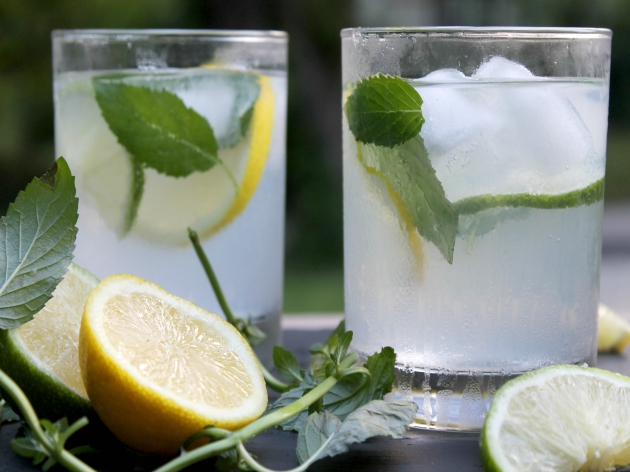 lemon lime mojito recipe 2