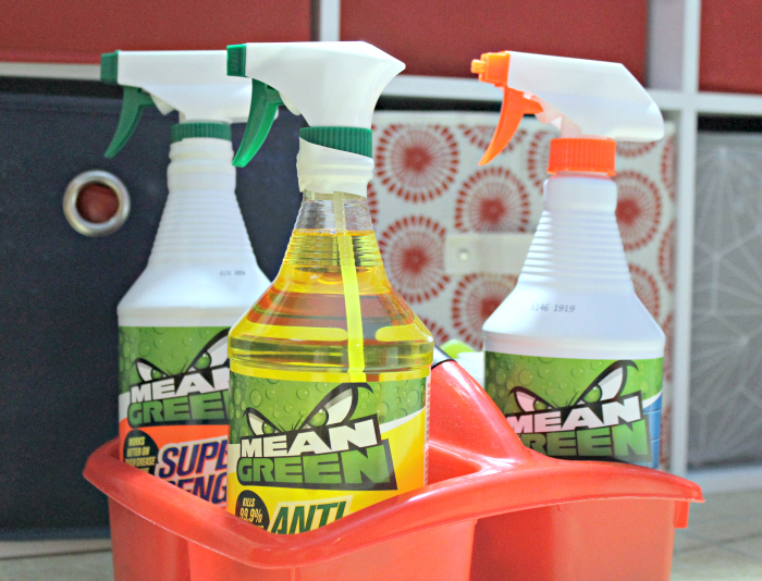Ten Reasons I Love The Mean Green Cleaning Products