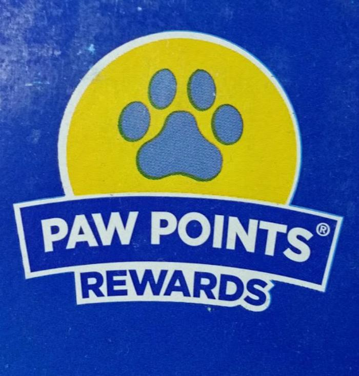 What You Need To Know Before Bringing Home A New Cat pawpoints