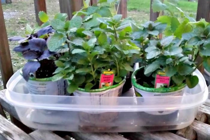 DIY Star Wars Fabric Covered Garden Pots 2