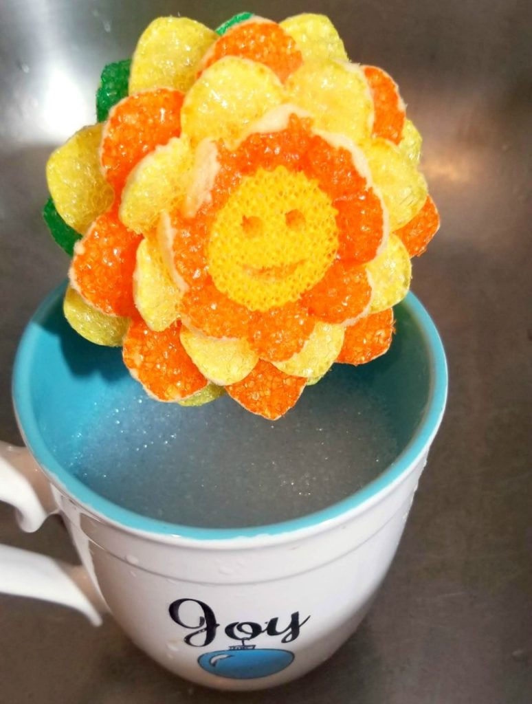 BabbleBoxx Home Shape Up For Spring scrub daisy 2