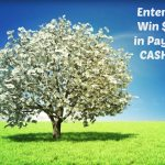 $25 PayPal Cash 2018 New Year Giveaway