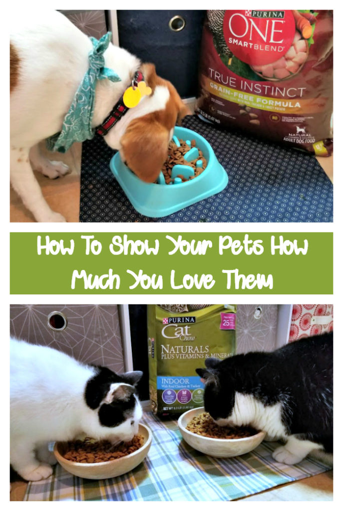 How do you show your pets how much you love them? For our pets, it comes down to how well they are cared for. We shop at stores we trust, for products we believe in, and the pets love. Paws down, that choice is @purina from PetSmart #ad #WhatFuelsRight width=