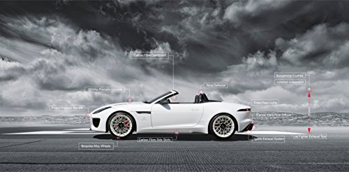 F-type V8 Full Predator Conversion