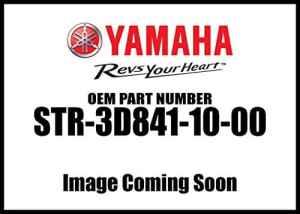 Yamaha Str-3d841–10–00dossier passager côté Ensemble de bras V-Star 1300