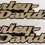 Lot de 2 stickers, logo Harley Davidson, Dyna Street Bob, en résine effet 3D Pour réservoir ou casque. Base chromée (couleur argentée effet miroir).