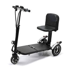 NNJJGS Tricycle Scooter électrique/Loisirs électrique + Accessoires 12KM / H 24V 8.8AH 250W Tricycle électrique à roulettes Tricycle De Loisirs