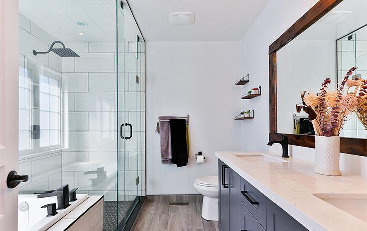 Bathroom Design Issues