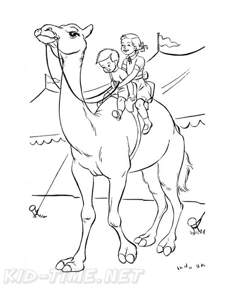 Camel Coloring Book Page Free Coloring Book Pages Printables