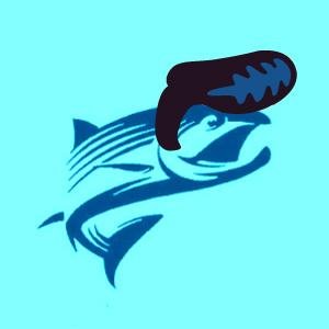 elvis-salmon