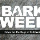 bark-week-header-wednesday-dogs-of-kiddnation-130x130