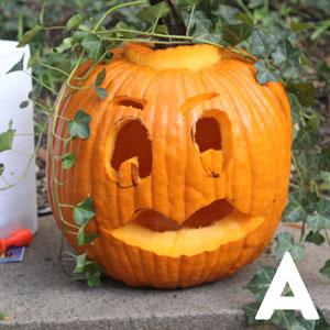 pumpkin-a