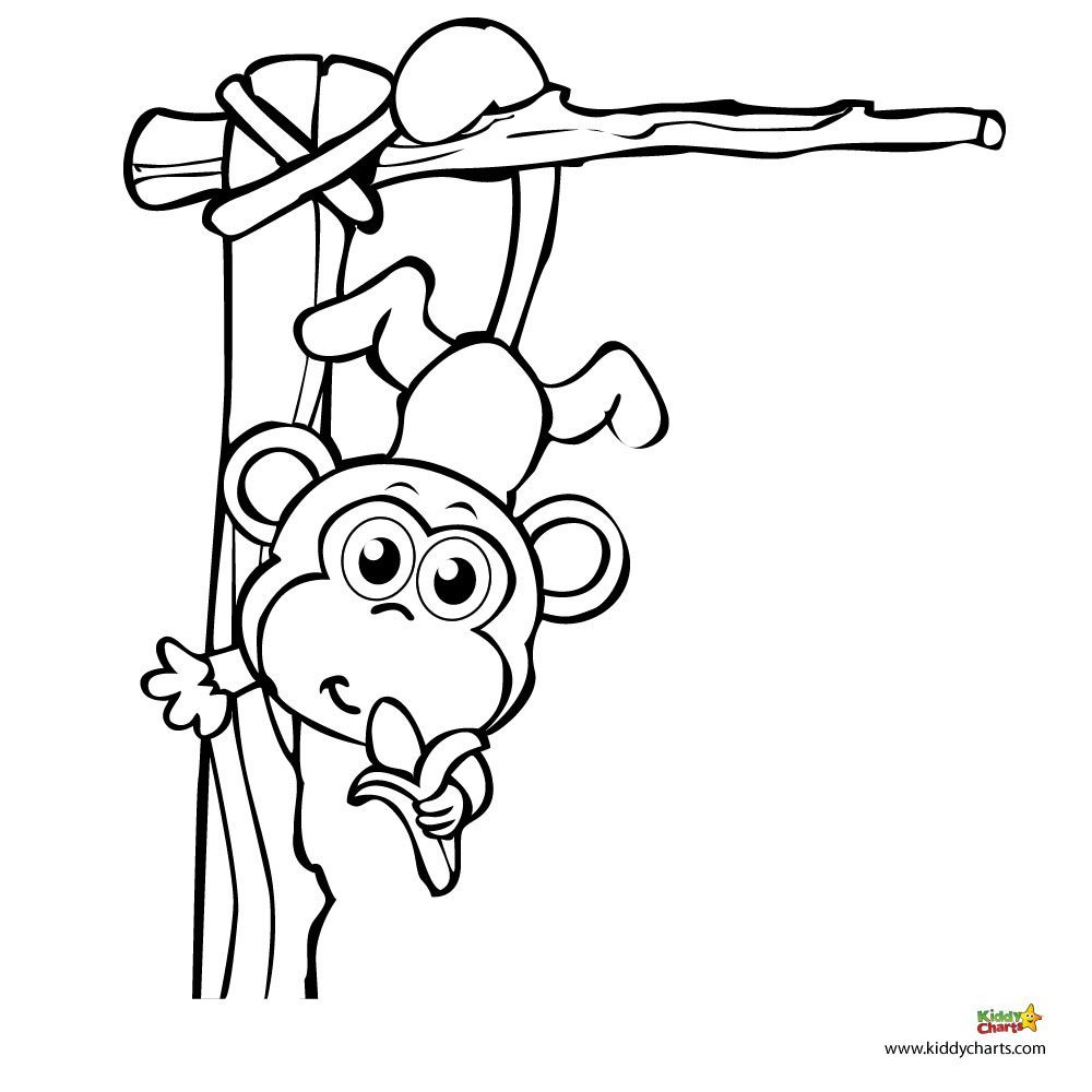 small monkeys colouring pages