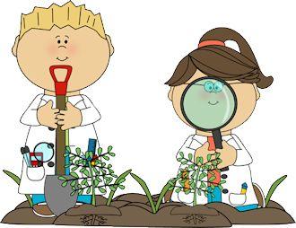 Resultado de imagen de plants for kids