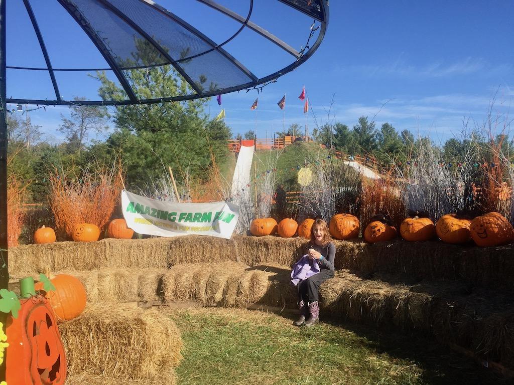 celebrate the season and then some at fall festivals around the dmv - Dmv Winter Garden