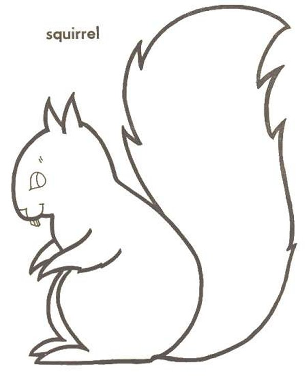 kids n fun com 13 coloring pages of squirrel