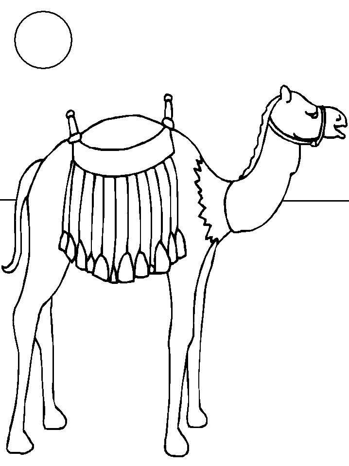 kids n fun com 15 coloring pages of camels