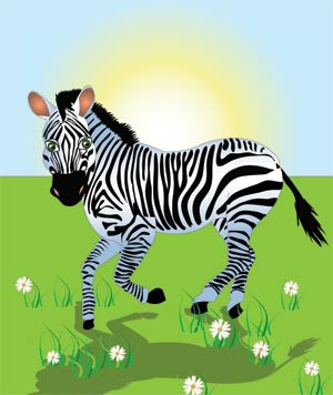 the zebra gallops over the plain