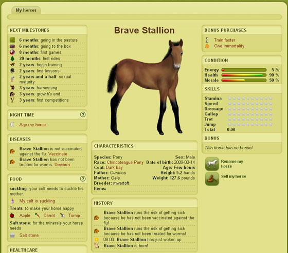 adopt a horse or pony on howrse com kids software