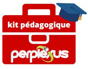 Kit pédagogique Perplexus 2