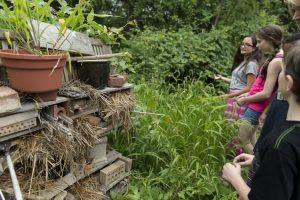 Falk School has hands-on education in its outdoor classroom.