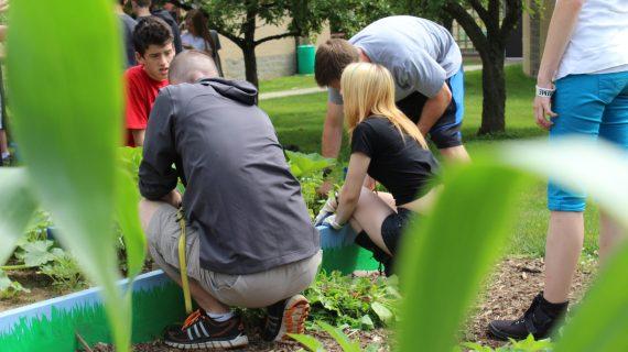 Students at Colfax Elementary School work in their STEAM garden.