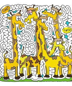 giraffefinal