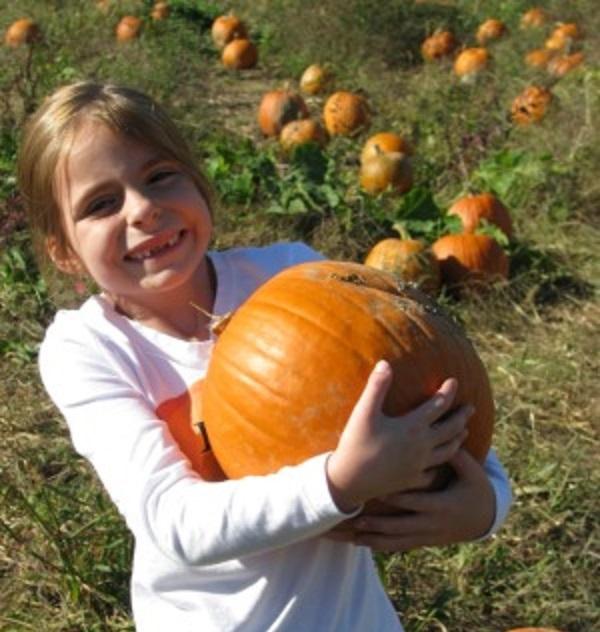 10 Pittsburgh farm festivals where you can pick the perfect pumpkin