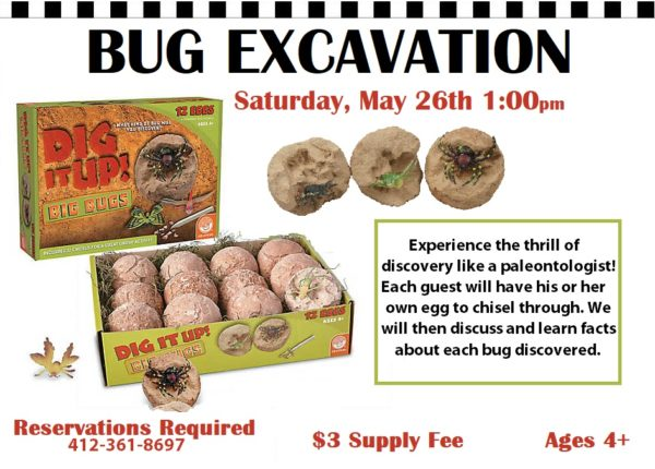 Bug Excavation @ Learning Express — Kidsburgh