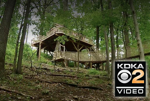 Treehouse classroom helps students find inspiration outside