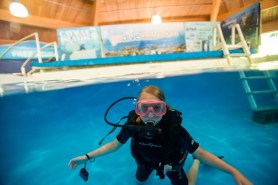 Try scuba diving at the Pittsburgh Zoo (but not in the shark tank!)