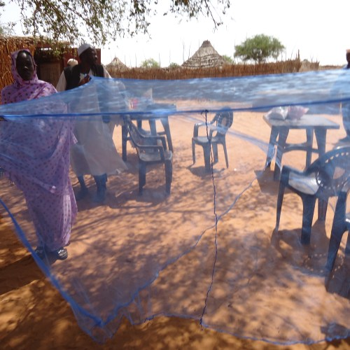 Mosquito net provided by Kids for Kids