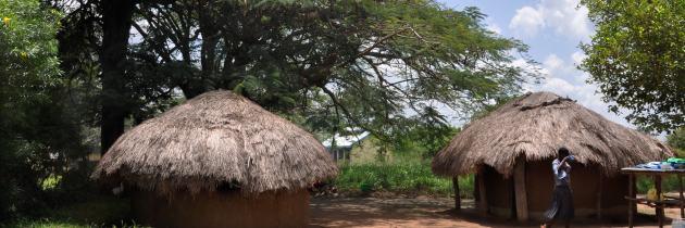 Village houses in the village of Lwala, Uganda.