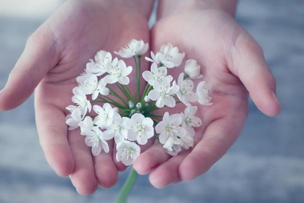 Spielideen: Blüten sammeln