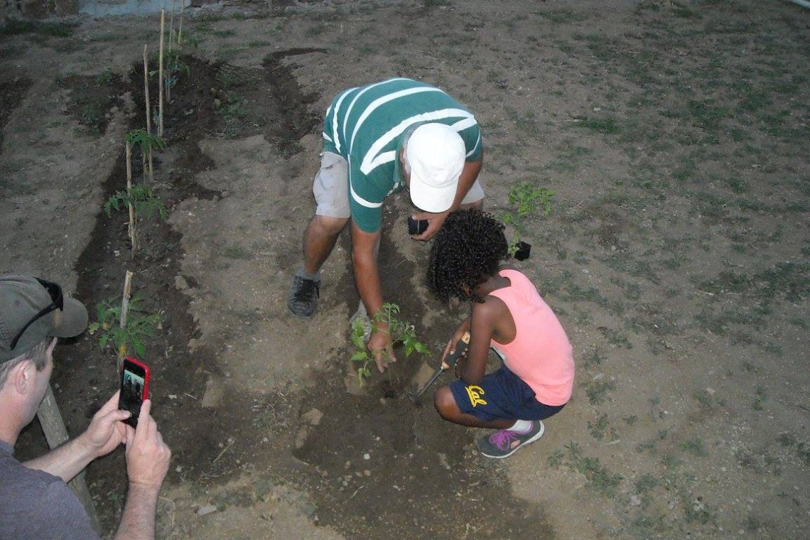 kids love greece activities for families greek culture family visit to an animal and organic farm on mykonos Cyclades