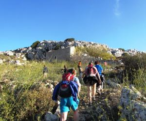 Discover the Wild Herbs of Crete Family Tour