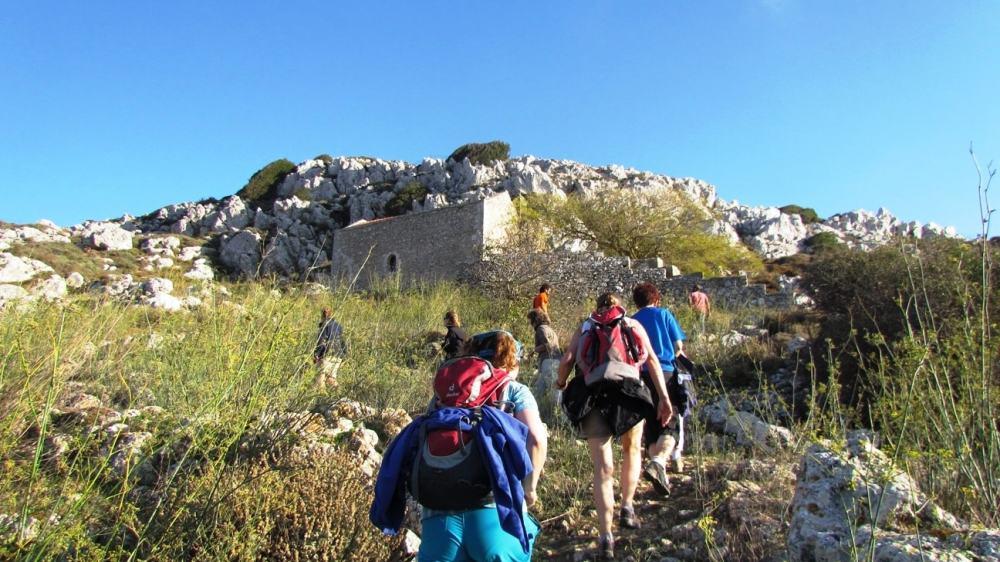 Discover the Wild Herbs of Crete Family Tour