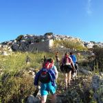 Discover the Wild Herbs of Crete Family Tour Sitia kids love greece