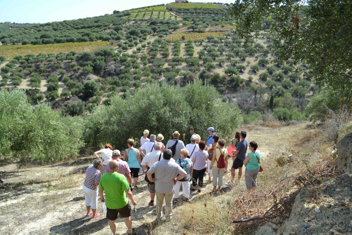 outdoor activities kids love greece family visit to a traditional olive oil farm Crete Heraklion Chania