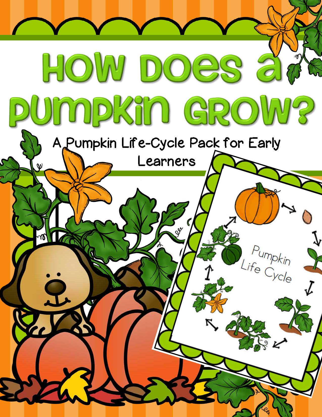 Pumpkins Life Cycle Activities Pack