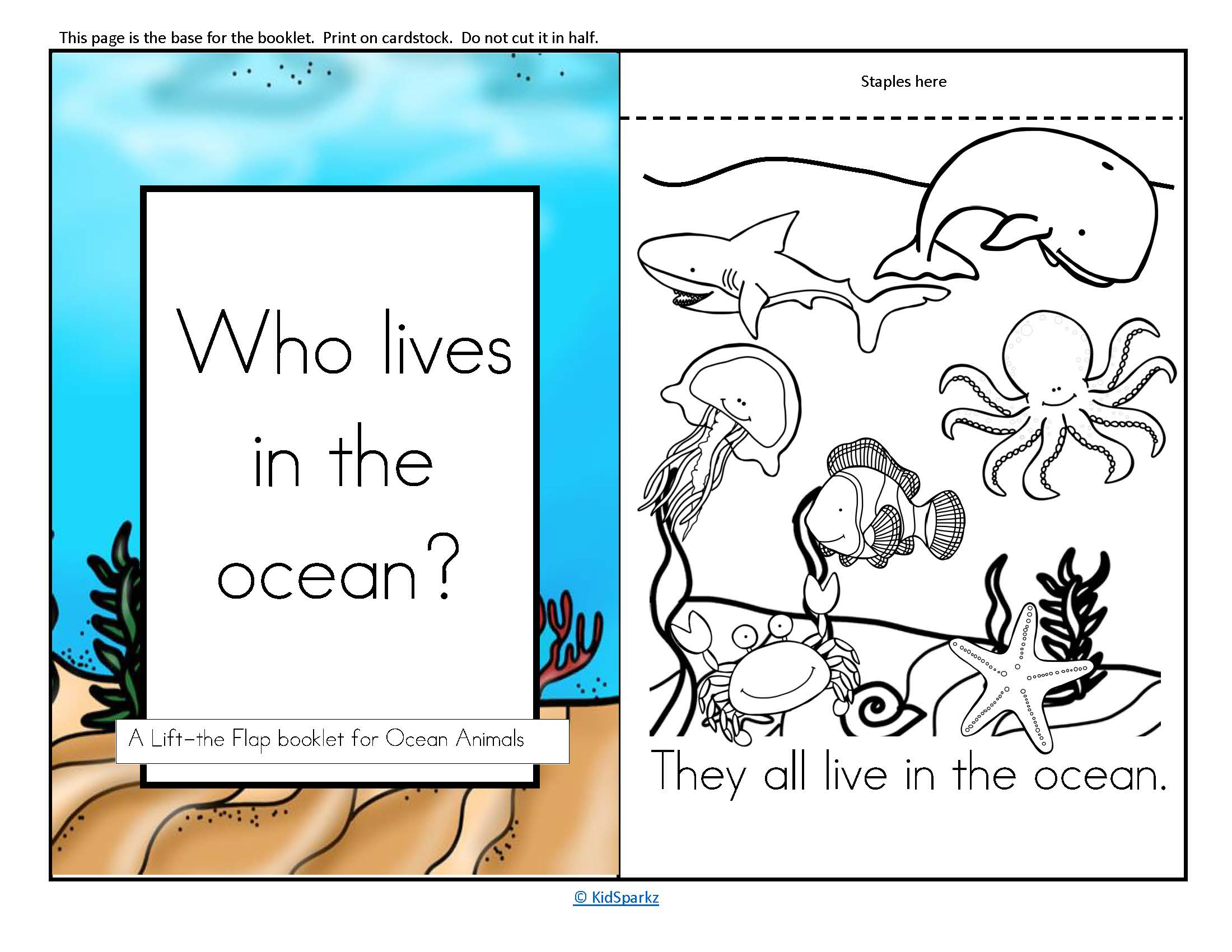 Ocean Animals Informative Reader Plus Puppets Vocabulary