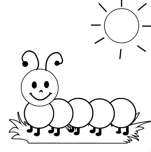 a caterpillar sunbathing in the sunshine coloring page kids play