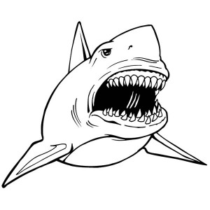 a realistic drawing of hammerhead shark coloring page kids play
