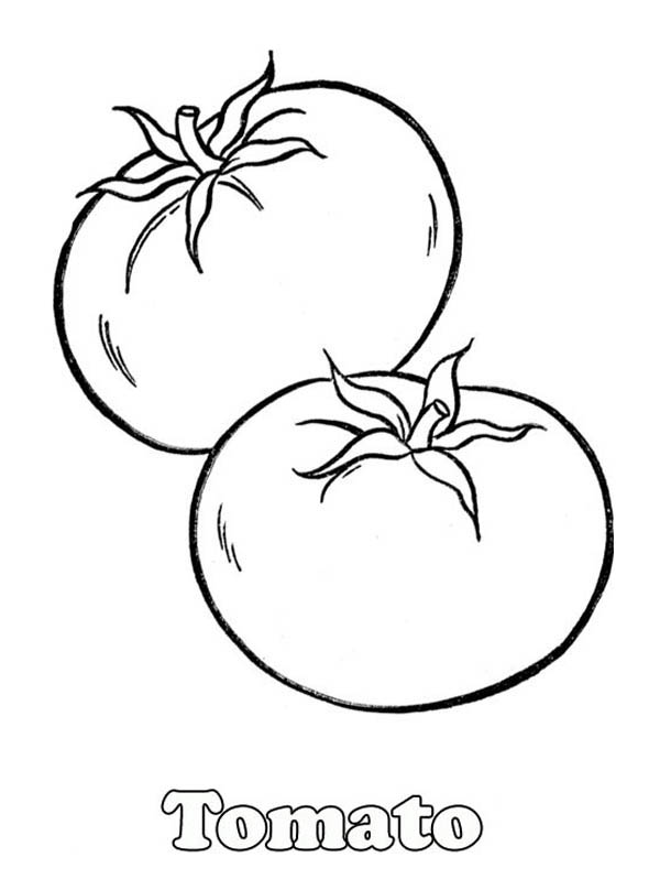 a pair of red tomatos coloring page kids play color