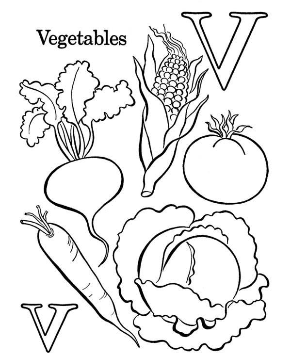 letter v. letter v coloring pages. learn letter v for vegetables ...