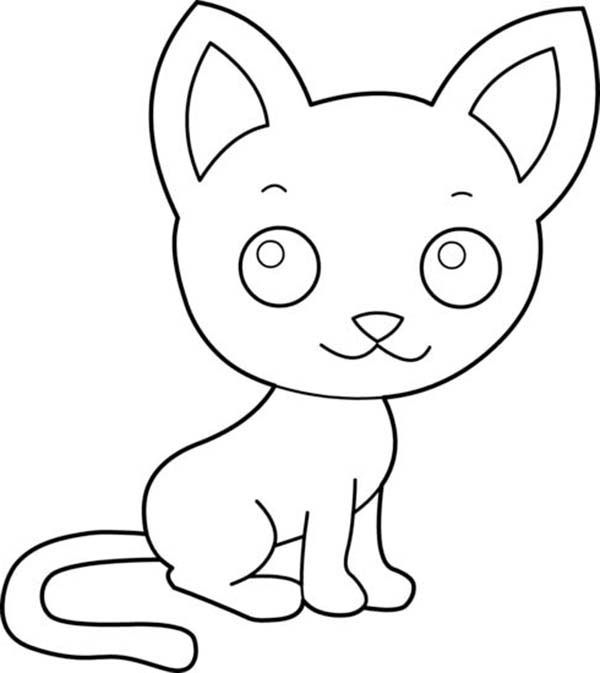 a cute kitty cat with a big ears coloring page kids play color