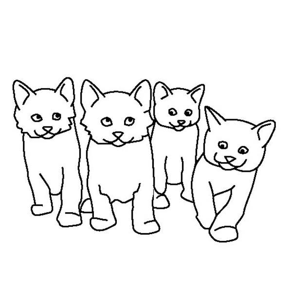 kids drawing of four cute kitty cats coloring page kids play color