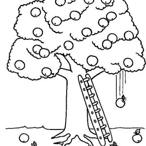 big apple tree coloring page big apple tree coloring page kids