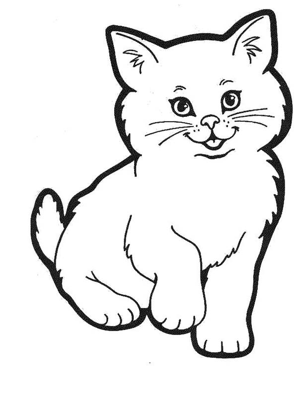 lovely kitty cat in a cat show coloring page kids play color