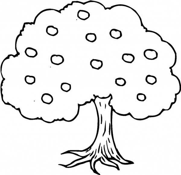 an apple tree coloring page kids play color